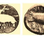 σημάδι νόμισμα γουρούνα γουρουνάκια