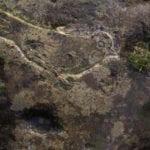 σημάδι με πουλί σε βράχο